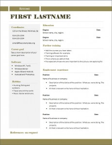 free_cv_template_290