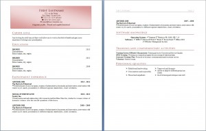 free_resume_cv_template_317