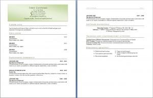 free_resume_cv_template_318
