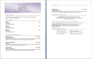 free_resume_cv_template_319