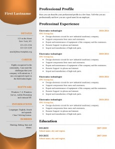 free_cv_resume_template_384-page0001