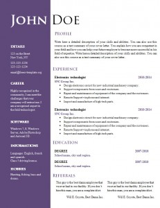 cv_resume_word_template_550