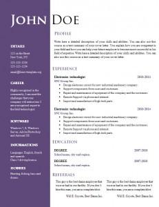 cv_resume_word_template_550