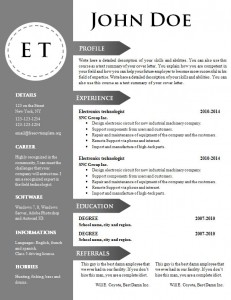 cv_resume_word_template_746
