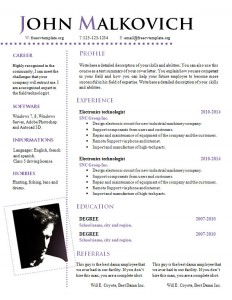 cv_resume_word_template_810