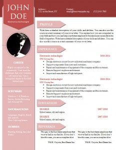 cv_resume_word_template_905