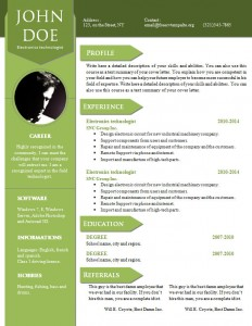 cv_resume_word_template_906