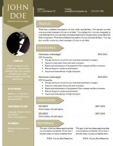 cv_resume_word_template_909