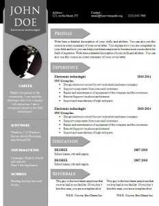 cv_resume_word_template_910
