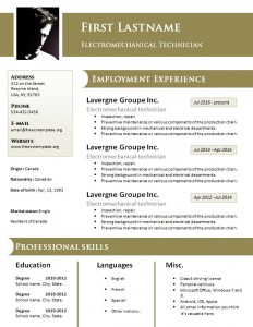 free_design_resume_template_freecvtemplate_dot_org_927