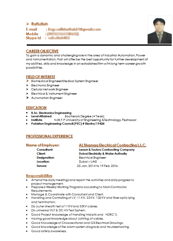 Electronics Engineer Get A Free Cv