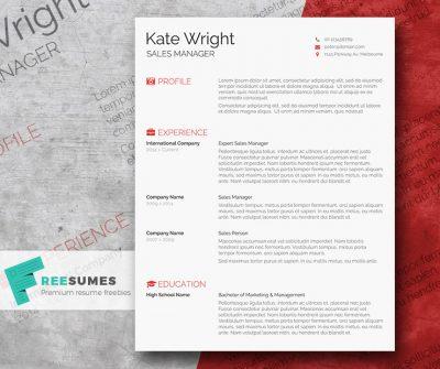Smart Freebie Word Resume Template – The Minimalist