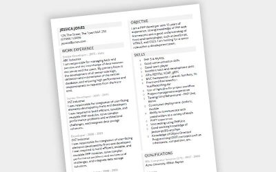 Guided CV Template