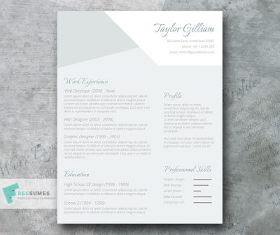 Subtle Resume Freebie – The Intelligent Applicant